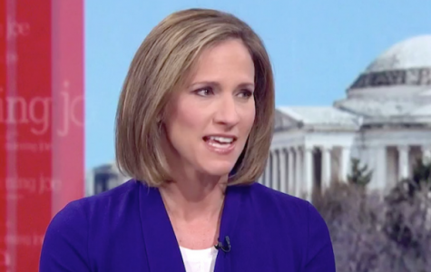 Mimi Rocah '88 discusses politics on MSNBC's