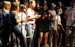 Singing on Mute