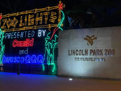 The entrance to Zoo Lights at the front of the Lincoln Park Zoo. Photo by Sophia Rosenkranz.